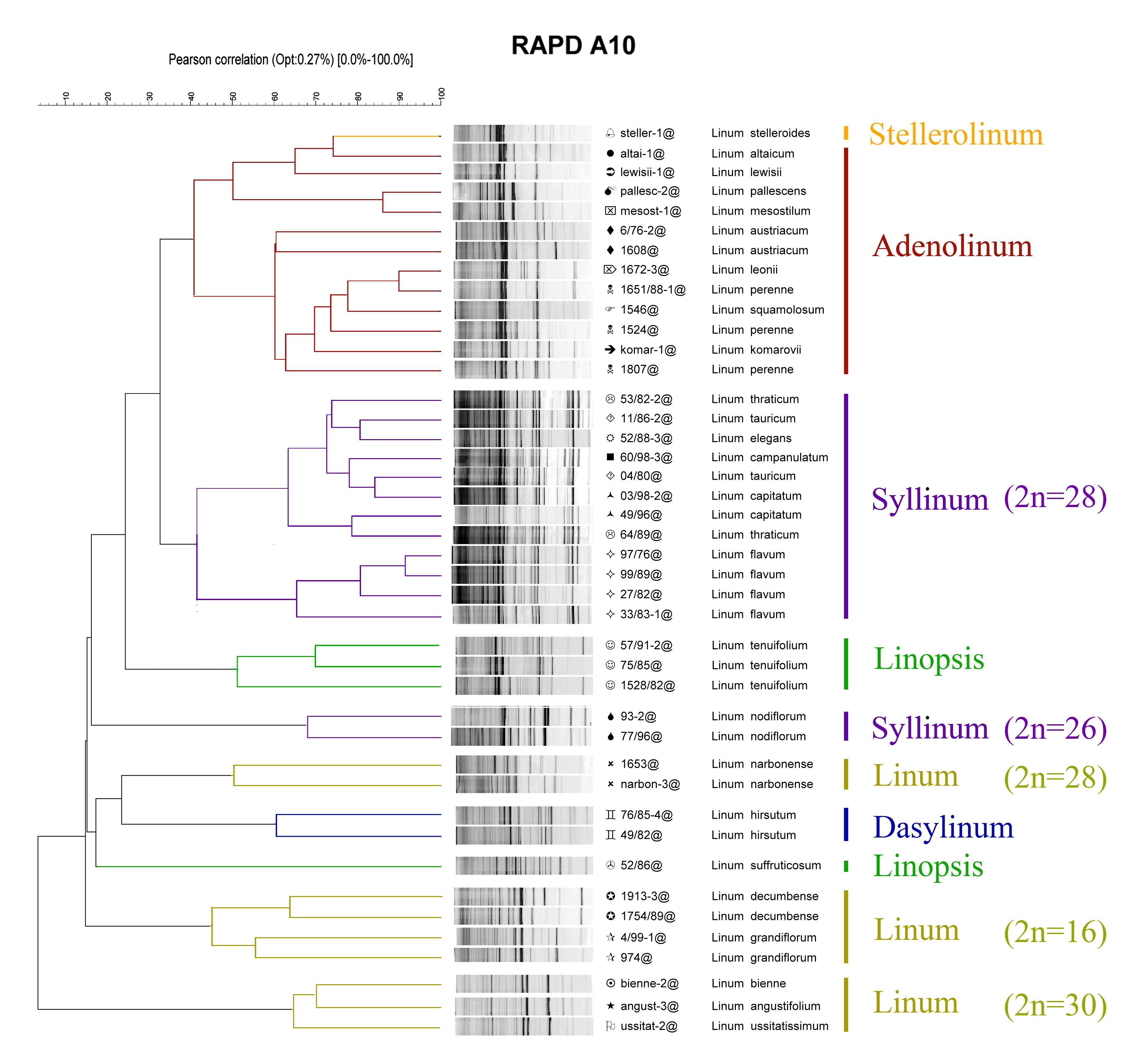 Изучение геномов у видов рода linum l Диссертация в виде  Р